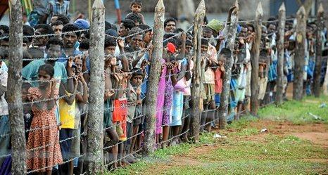 Sri Lanka: Hambre y desnutrición en niñas y niños. 0917_mun_tamiles