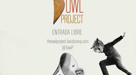 The-owl-project16739443021464961958