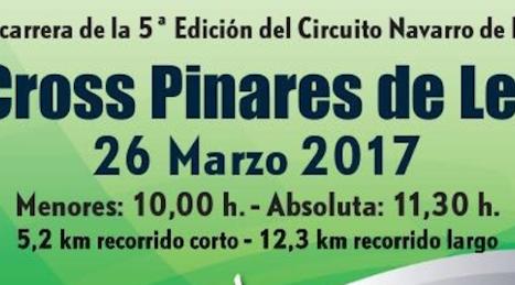 Cross_pinares