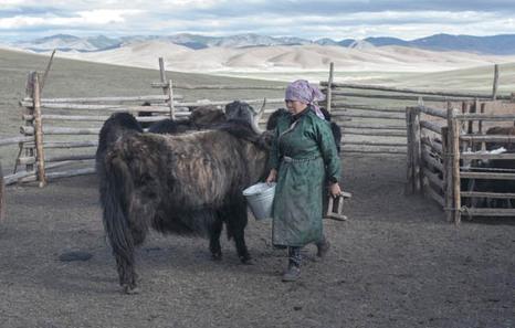 063_mongoliaa