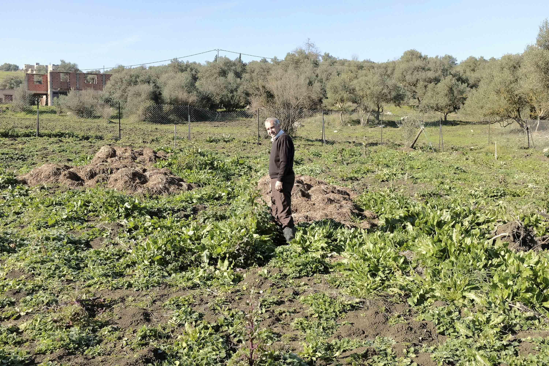 Arab en el terreno donde pretende cultivar la huerta y volver a ser autosuficiente